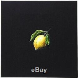 Beyonce Comment Faire Lemonade Box Set Limited Edition De 2500 Brand New Sealed