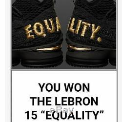 Nike Lebron 15 Égalité Noir Edition Limitée Extrêmement Taille Rare 10 Marque Nouveau