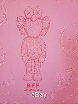 Tout Neuf! Kaws Bff Rose En Peluche Limited Edition 100% Authentique 2019 In Hand